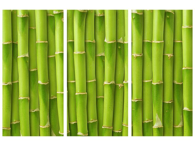 Klebeposter 3-teilig Bambuswand