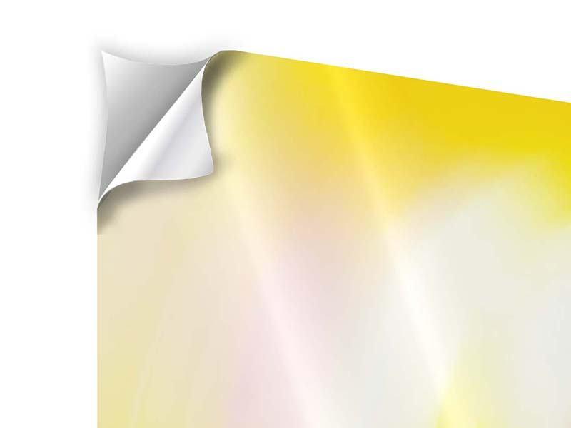 Klebeposter 3-teilig Abstrakte Farbkreise
