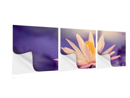 Panorama Klebeposter 3-teilig Lotus bei Sonnenuntergang