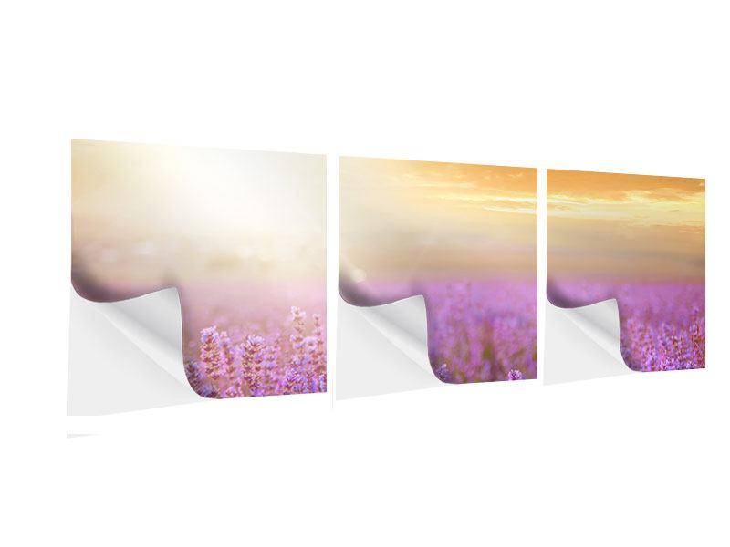 Panorama Klebeposter 3-teilig Sonnenuntergang beim Lavendelfeld