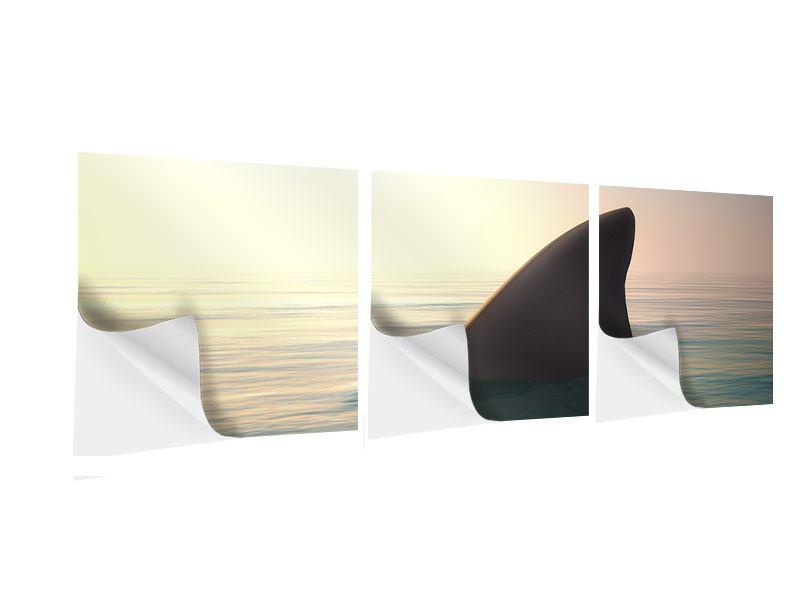 Panorama Klebeposter 3-teilig Haifischflosse