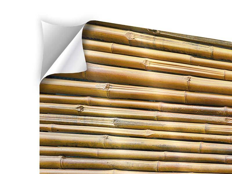 Panorama Klebeposter 3-teilig Bambus
