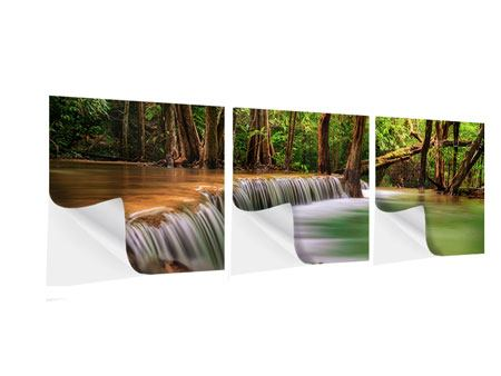 Panorama Klebeposter 3-teilig Deep Forest