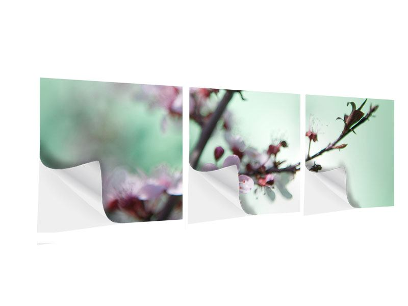 Panorama Klebeposter 3-teilig Die japanische Kirschblüte