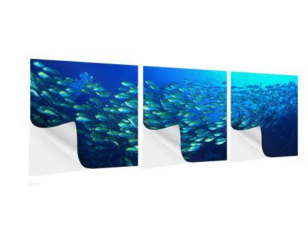 Panorama Klebeposter 3-teilig Fischschwarm