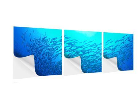 Panorama Klebeposter 3-teilig Fischwelt
