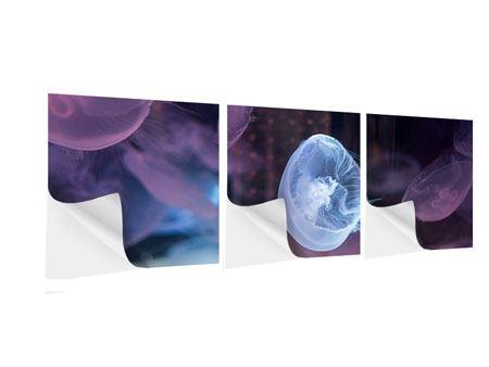Panorama Klebeposter 3-teilig Die Schönheit der Quallen