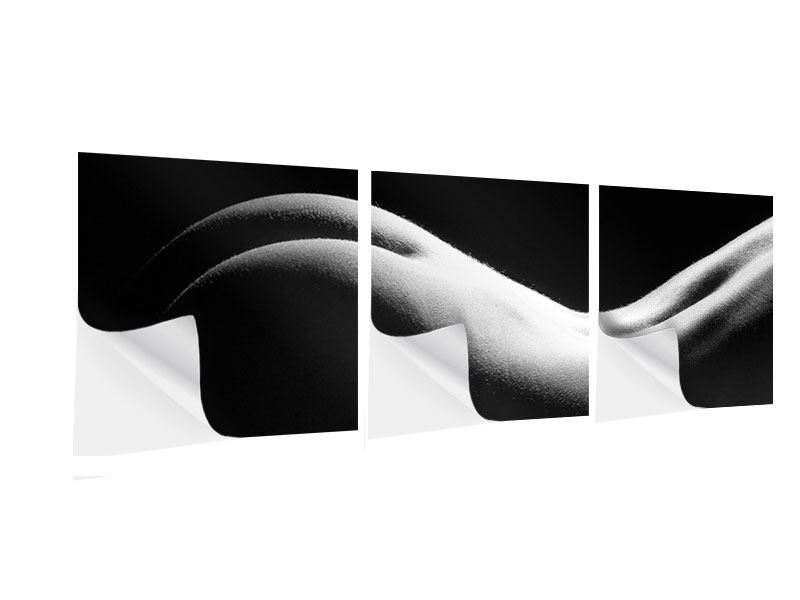 Panorama Klebeposter 3-teilig Nude