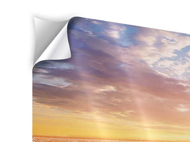 Panorama Klebeposter 3-teilig Sonnenaufgang bei den Tulpen