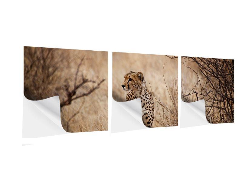 Panorama Klebeposter 3-teilig Eleganter Gepard