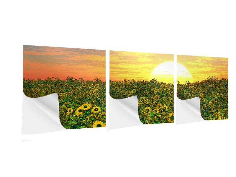 Panorama Klebeposter 3-teilig Blumenpanorama bei Sonnenuntergang