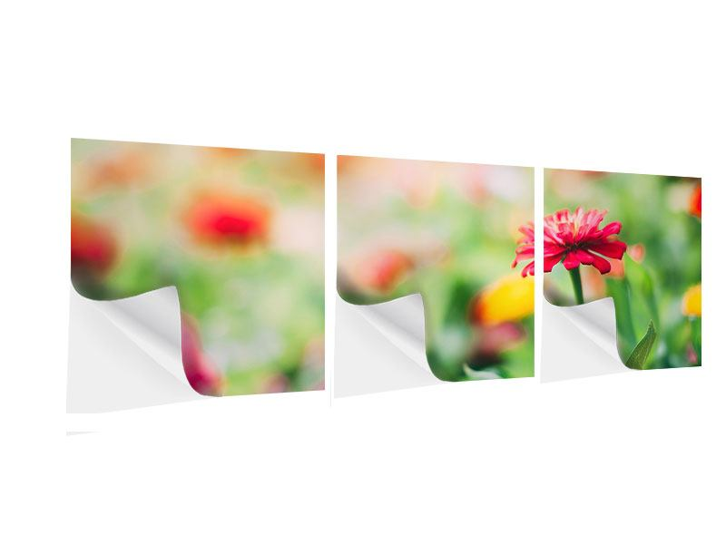 Panorama Klebeposter 3-teilig Im Blumengarten