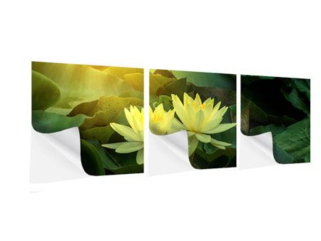 Panorama Klebeposter 3-teilig Wilde Lotus