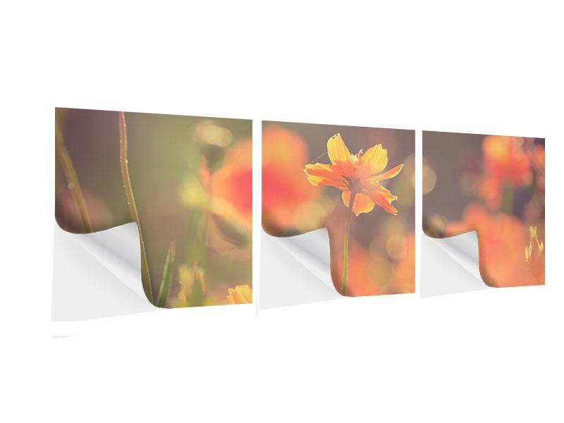 Panorama Klebeposter 3-teilig Blütenpracht