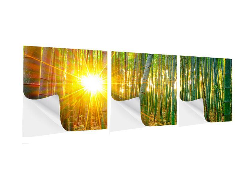 Panorama Klebeposter 3-teilig Bambusse