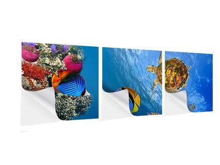 Panorama Klebeposter 3-teilig Fisch im Wasser