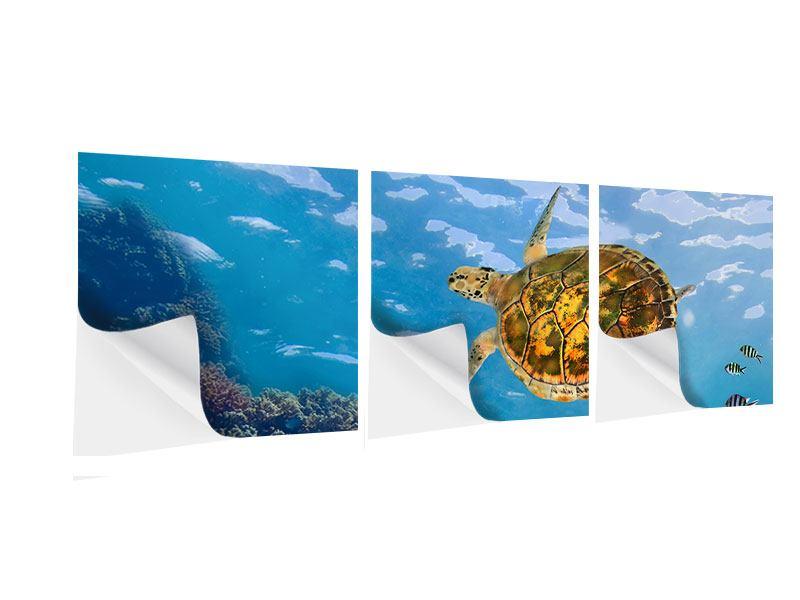 Panorama Klebeposter 3-teilig Die Wasserschildkröte