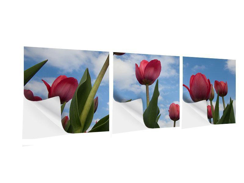 Panorama Klebeposter 3-teilig Tulpen im Himmel