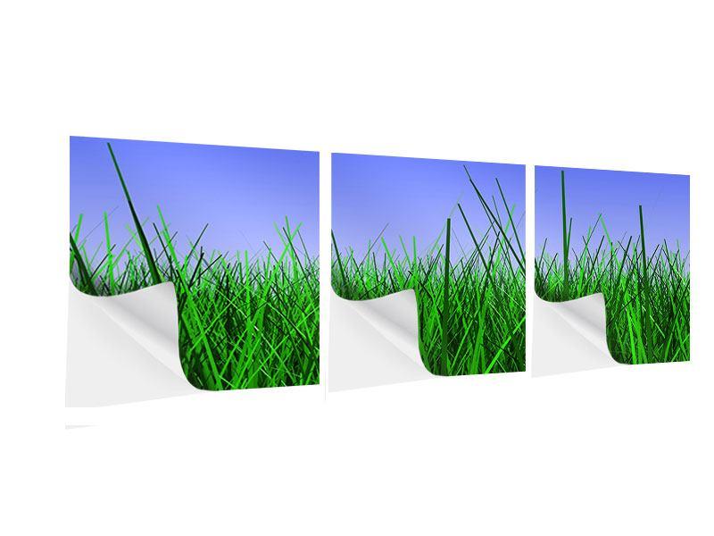 Panorama Klebeposter 3-teilig Im Gras