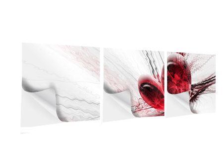 Panorama Klebeposter 3-teilig Herzspiegelung