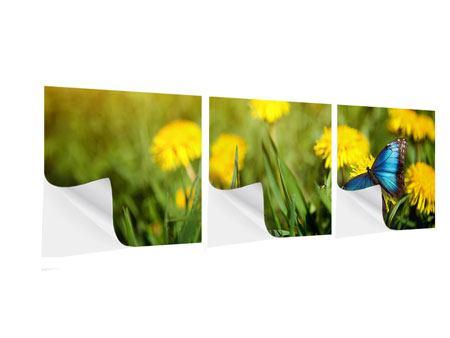 Panorama Klebeposter 3-teilig Der Löwenzahn und der Schmetterling