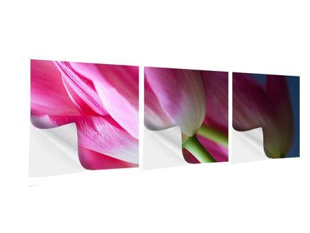 Panorama Klebeposter 3-teilig Makro Tulpen