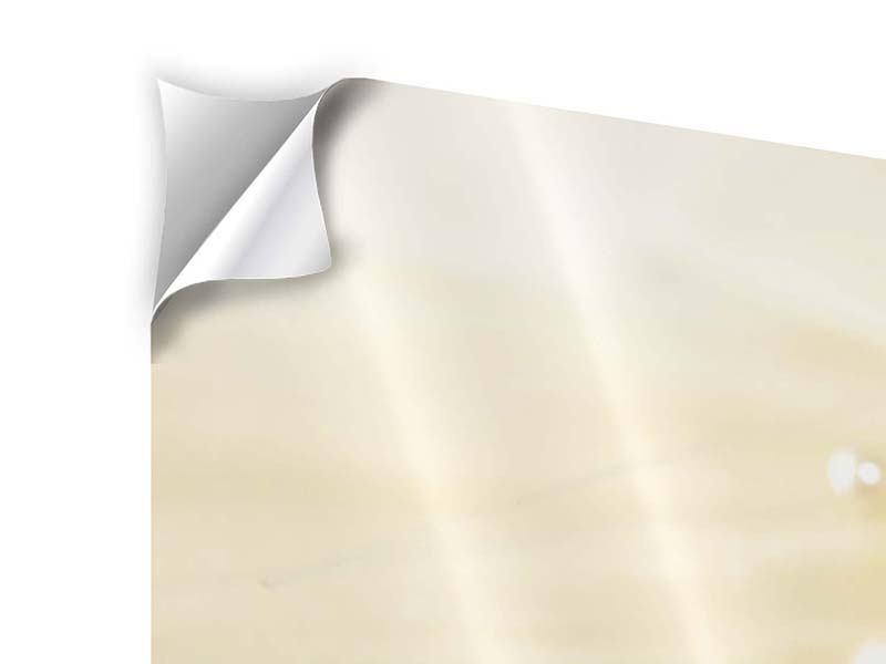 Panorama Klebeposter 3-teilig Trauringe