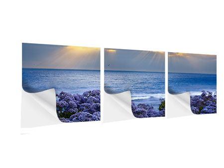 Panorama Klebeposter 3-teilig Der Lavendel und das Meer