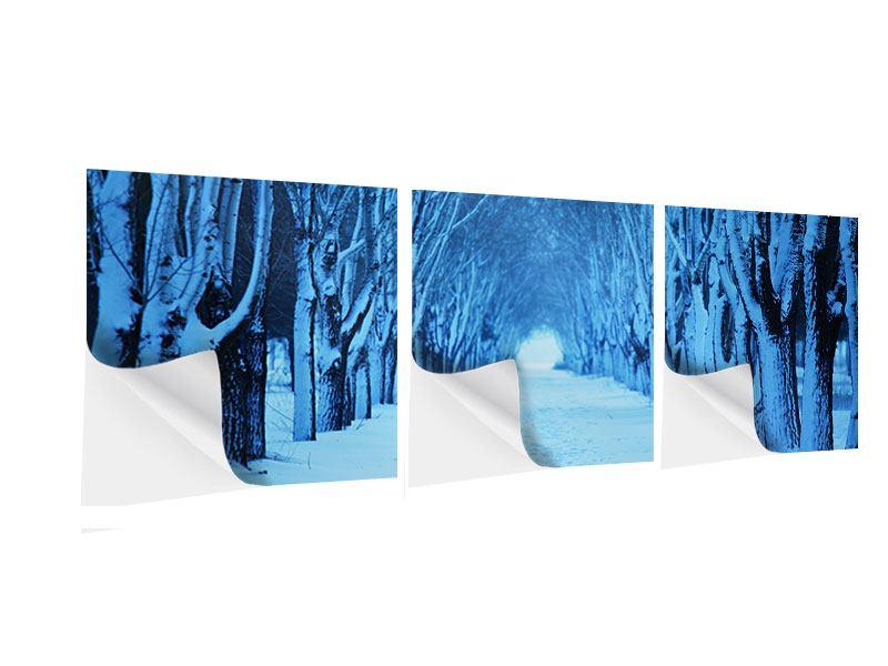 Panorama Klebeposter 3-teilig Winterbäume