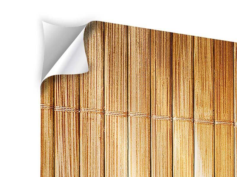 Panorama Klebeposter 3-teilig Bambusrohre