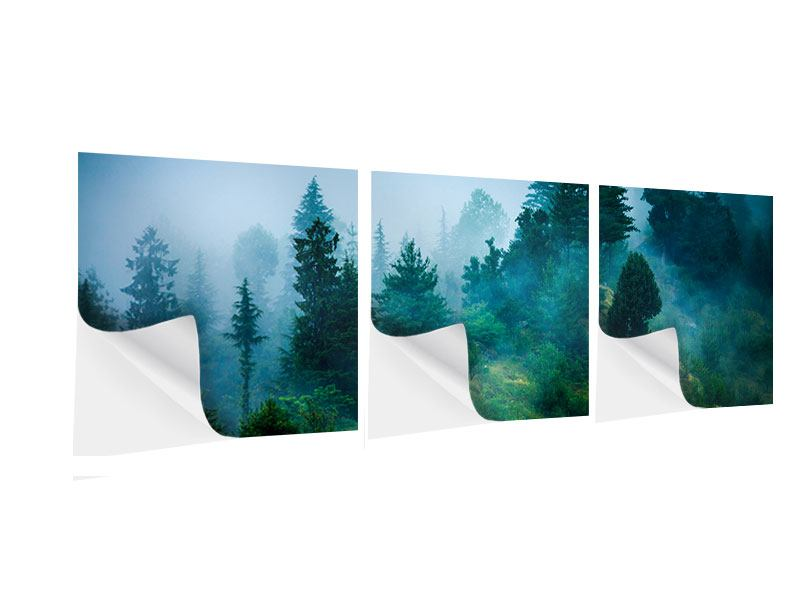 Panorama Klebeposter 3-teilig Geheimnisvoller Wald