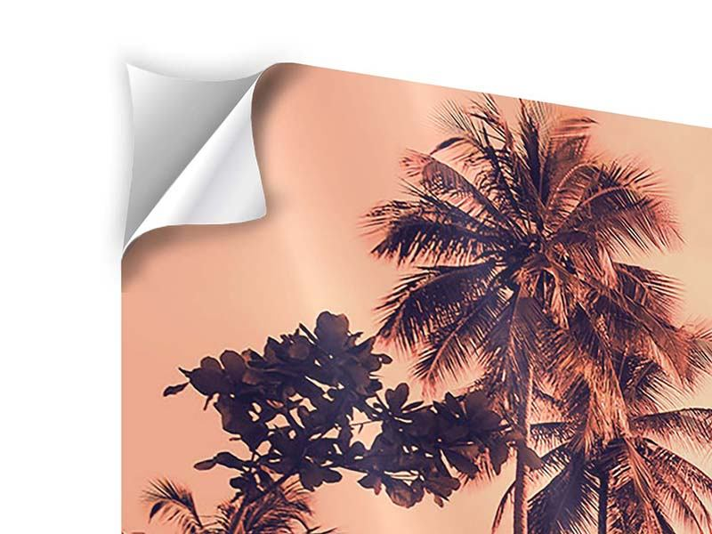 Panorama Klebeposter 3-teilig Tropenparadies