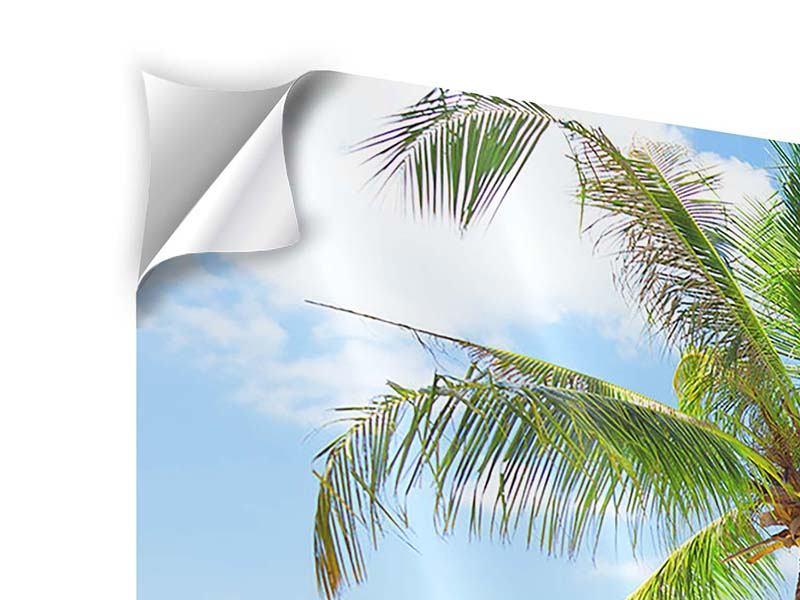 Panorama Klebeposter 3-teilig Die eigene Insel