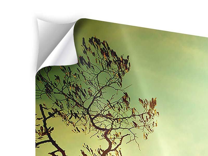 Panorama Klebeposter 3-teilig Bäume im Herbst