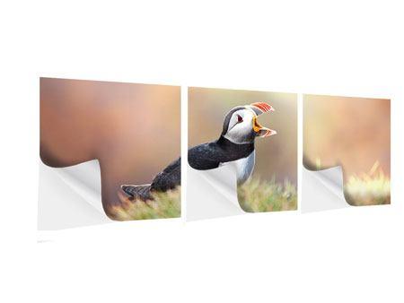 Panorama Klebeposter 3-teilig Der Papageitaucher