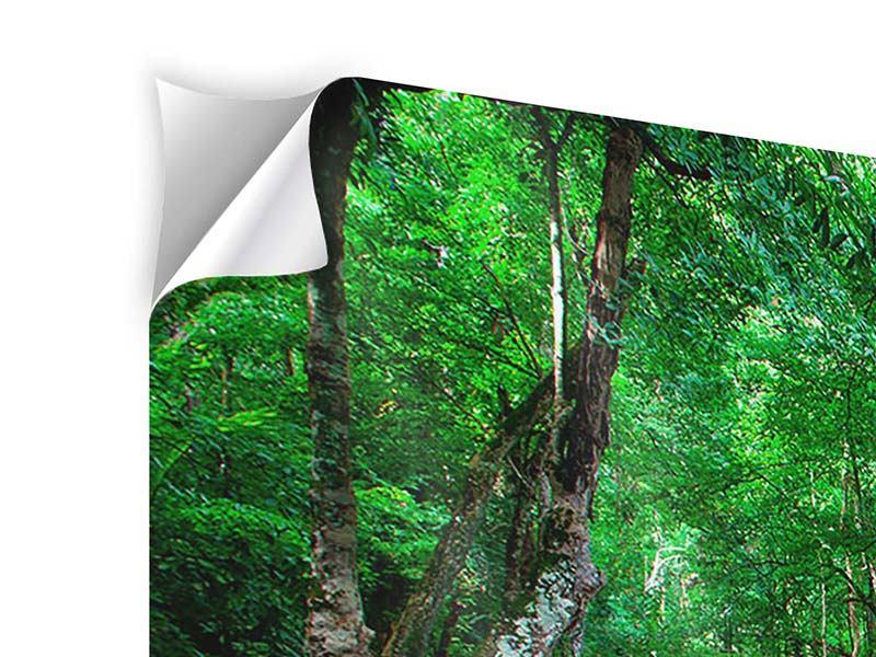 Panorama Klebeposter 3-teilig Am Fusse von Erawan