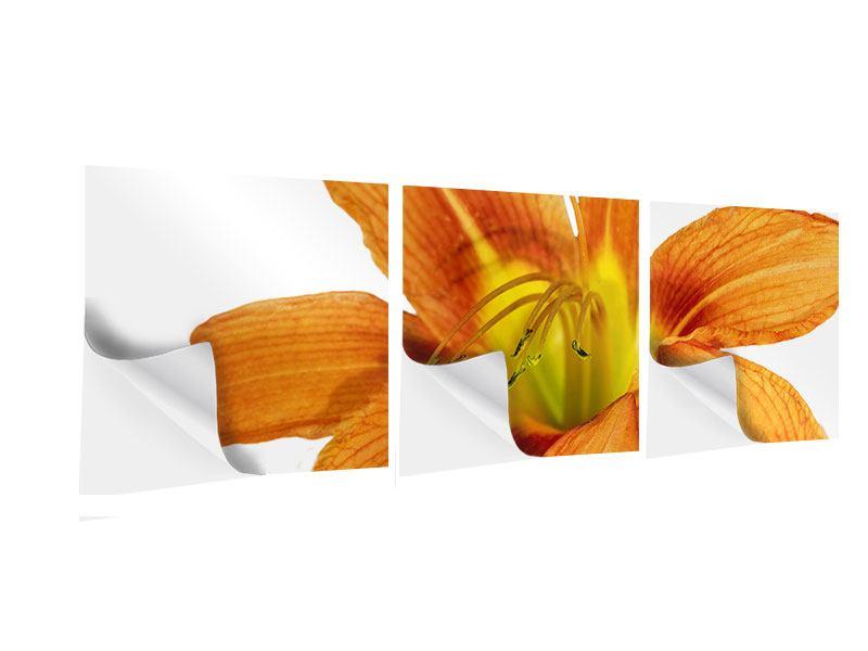 Panorama Klebeposter 3-teilig Die Tiger-Lilie