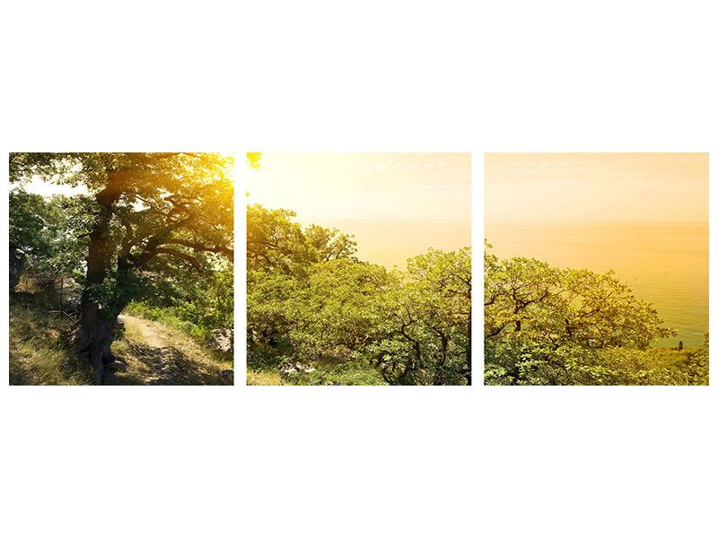 Panorama Klebeposter 3-teilig Sonnenuntergang in der Natur