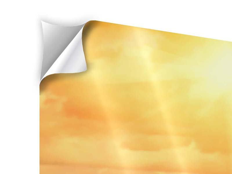 Panorama Klebeposter 3-teilig Goldenes Licht für Sonnenblumen