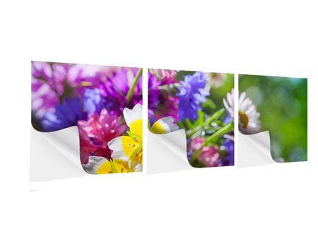 Panorama Klebeposter 3-teilig XXL Gartenblumen