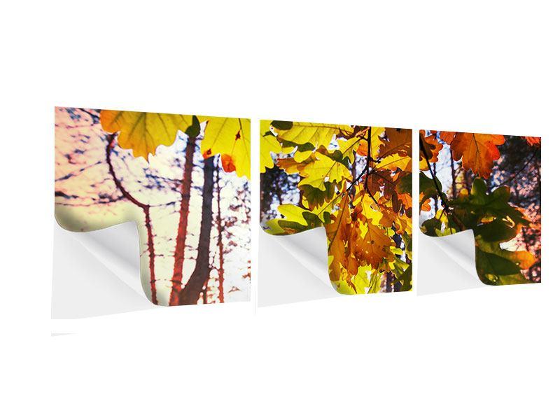Panorama Klebeposter 3-teilig Herbst
