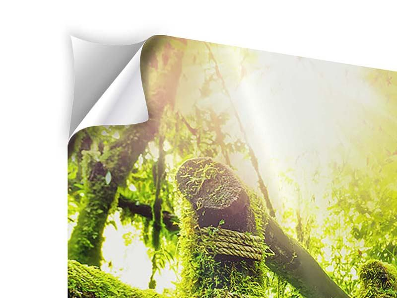 Panorama Klebeposter 3-teilig Moos