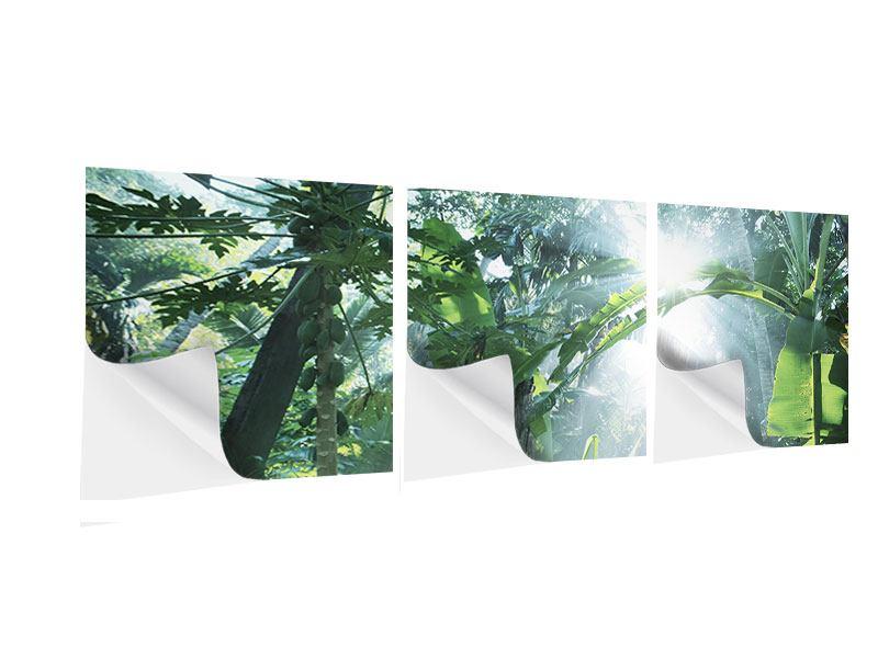 Panorama Klebeposter 3-teilig Dschungelstar