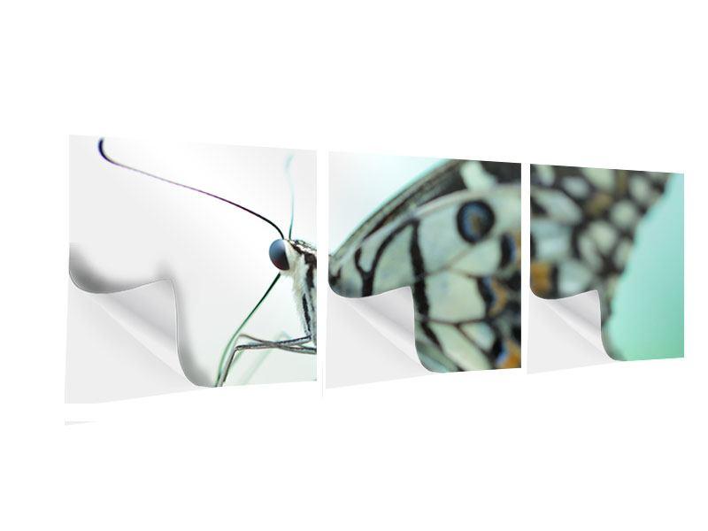 Panorama Klebeposter 3-teilig Schmetterling XXL
