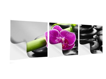Panorama Klebeposter 3-teilig Feng-Shui-Orchidee