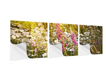 Panorama Klebeposter 3-teilig Sommerliche Blumenwiese