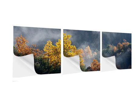 Panorama Klebeposter 3-teilig Mondscheinwald