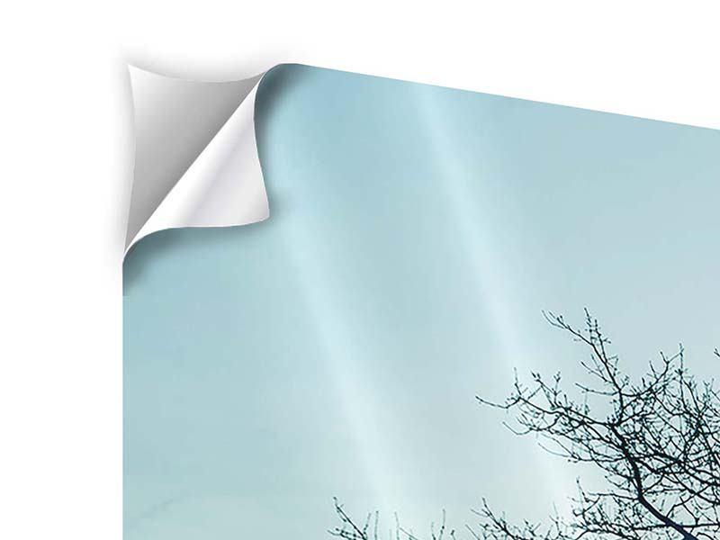 Panorama Klebeposter 3-teilig Der Zauberbaum