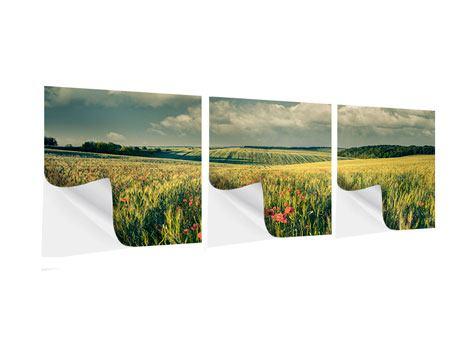 Panorama Klebeposter 3-teilig Der Mohn im Weizenfeld