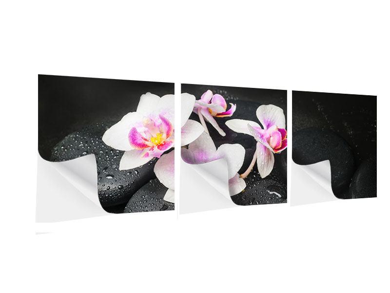 Panorama Klebeposter 3-teilig Feng-Shui-Orchidee Zen